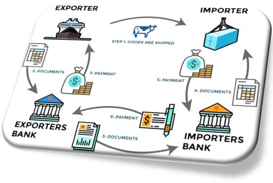 التصدير وسداد ثمن البضائع