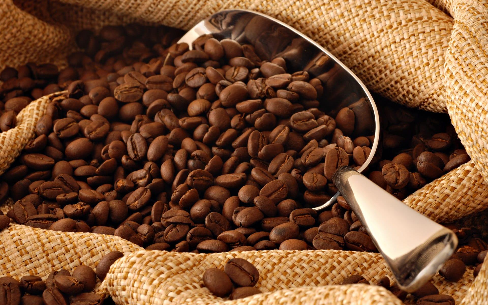 أسس تجارة القهوة في الأسواق العالمية
