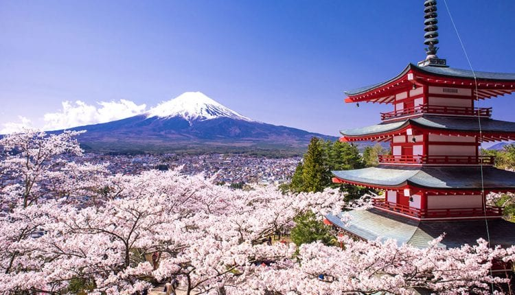 كيفية إنشاء شركة في اليابان
