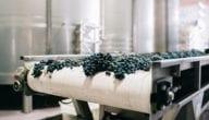 مستقبل تكنولوجيا الزراعة التجارية