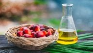 Benefits of Palm Oil