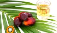 Sources of Palm Oil