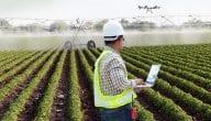 المحاصيل الزراعية في البوسنة والهرسك