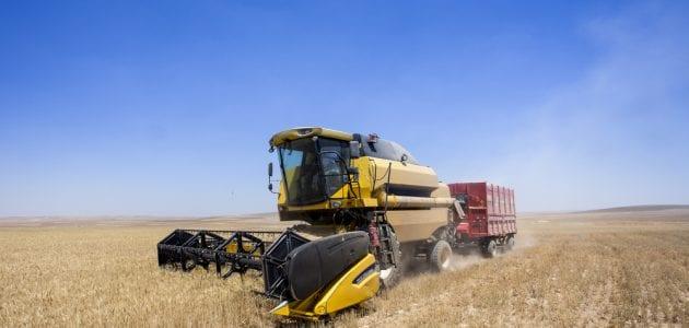 المحاصيل الزراعية في المجر