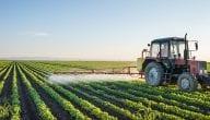 نظرة على المحاصيل الزراعية في هولندا