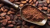 ما هي طريقة زراعة الكاكاو