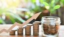 كيف يعمل اقتصاد السوق الإسلامي