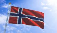 ما هي المشاريع الناجحة في النرويج