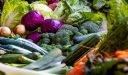 مواسم  زراعة الخضروات جدول مواعيد زراعة الخضروات