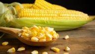 ما هي مصادر الذرة