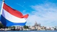 ما هي أفضل أسواق الجملة في هولندا