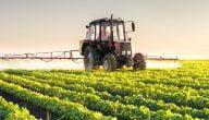 ما هي مشاكل الإنتاج الزراعي