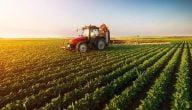 ما هي المشاكل التي تواجه الزراعة في العالم
