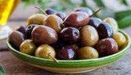 ما هي طرق زراعة الزيتون