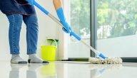 مشروع شركة تنظيف في السويد