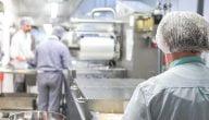 مشروع مطبخ لصناعة الطعام في السويد