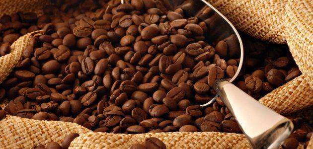 ماهو أجود نوع قهوة أرابيكا