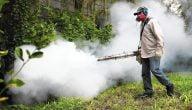 كيف تحصل على صلاحية تجارة المبيدات في مصر