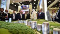 كيف يمكن للأجانب تأسيس شركة في قطر