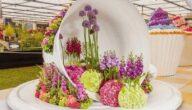تأسيس شركة تصميم حدائق في ألمانيا