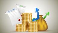 كم عدد صناديق الاستثمار في مصر وانواعها