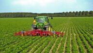التوازن بين الزراعة والبيئة والطاقة الحيوية المتجددة
