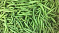مواسم زراعة الفاصولياء الخضراء وطريقة زراعة الفاصولياء