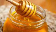 أكثر الدول المنتجة للعسل وأشهرها
