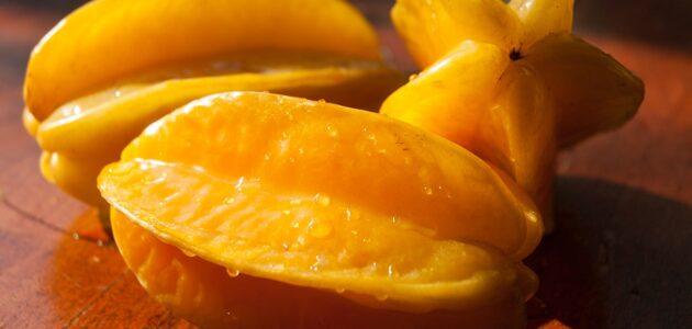 مواسم زراعة فاكهة النجمة وطريقة زراعة النجمة