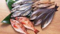 أسماء أنواع الأسماك في تركيا