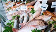 أغلى أنواع السمك في جدة