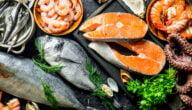 أفضل أنواع السمك فائدة