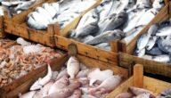 أفضل أنواع السمك في سوريا