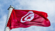 أنواع الشركات التجارية في القانون تونس
