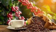 تجارة القهوة في الأسواق العالمية