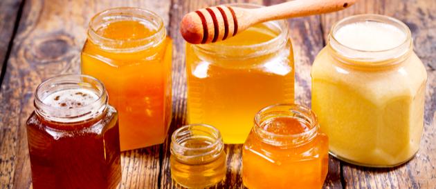 تربية النحل واستيراد العسل في مصر