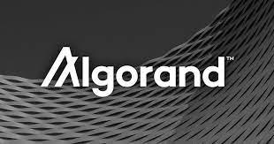 عملة Algorand شرح القيمة السوقية Algorand