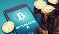 مشروع عملة Bitcoin Cash