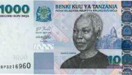 رمز عملة تنزانيا