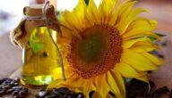 صناعة زيت دوار الشمس مكونات زيت دوار الشمس