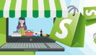 الربح من انشاء متجر الكتروني كامل على منصة شوبيفاي Shopify دروبشيبنج