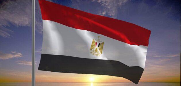 شركة الاتصالات في مصر