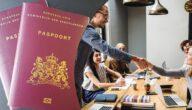 شروط إقامة العمل في هولندا المستندات المطلوبة