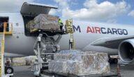 أنواع الشحن الجوي