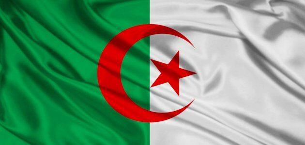 مشاريع صغيرة من المنزل في الجزائر
